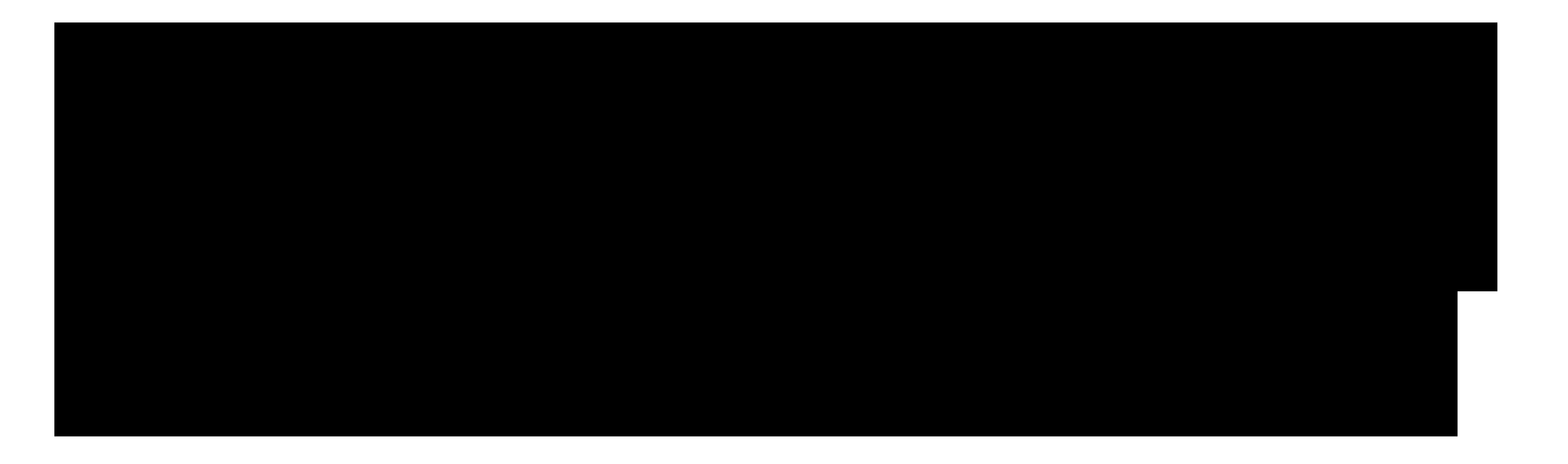 SBS_horizontal_big_black